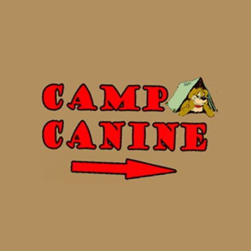 camp canine