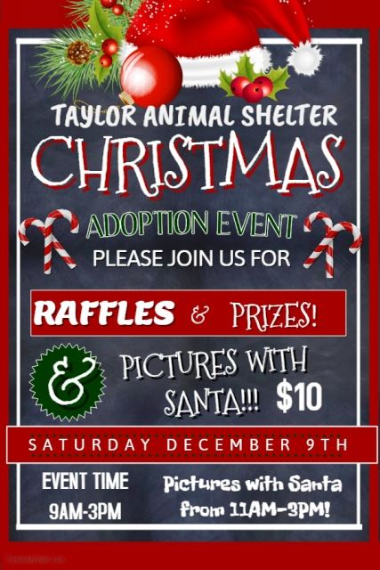 ANIMAL SHELTER ADOPT DAY